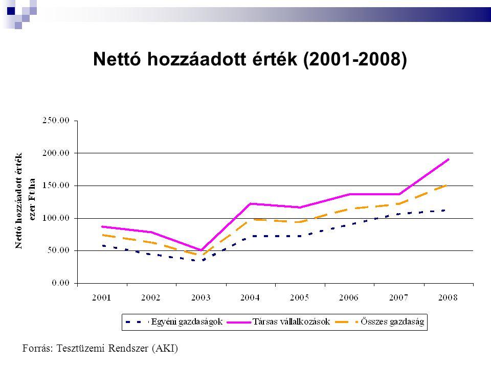 Nettó hozzáadott érték (2001-2008)