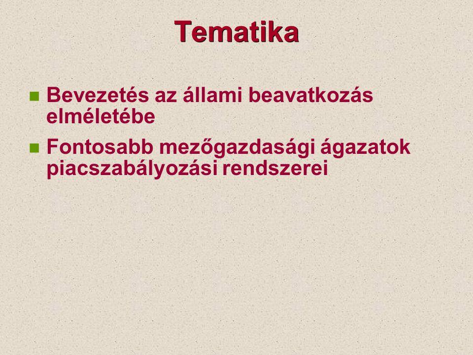 Tematika Bevezetés az állami beavatkozás elméletébe