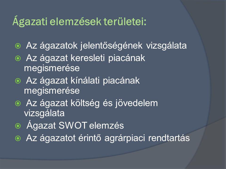 Ágazati elemzések területei: