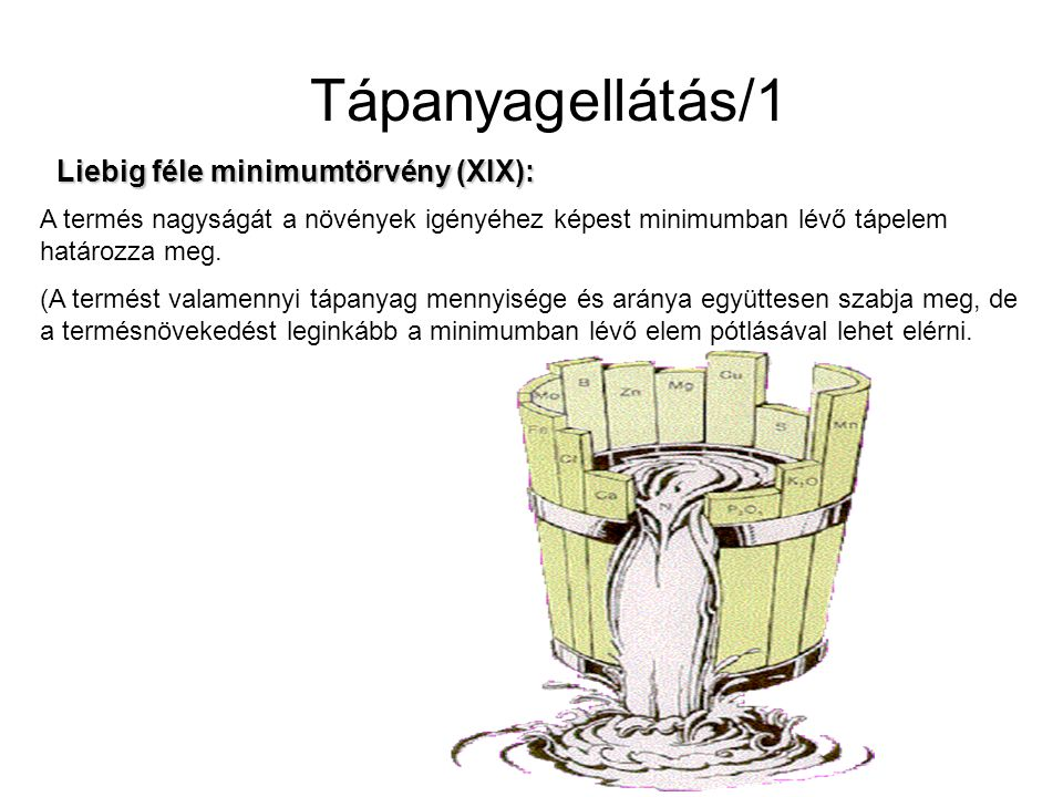 Tápanyagellátás/1 Liebig féle minimumtörvény (XIX):