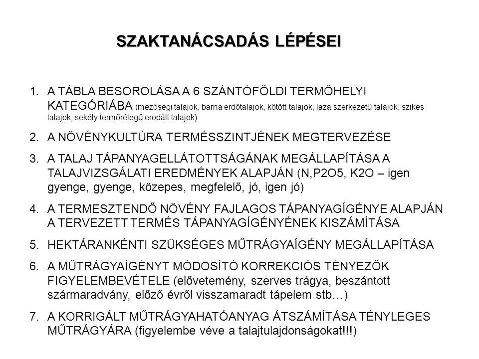 SZAKTANÁCSADÁS LÉPÉSEI
