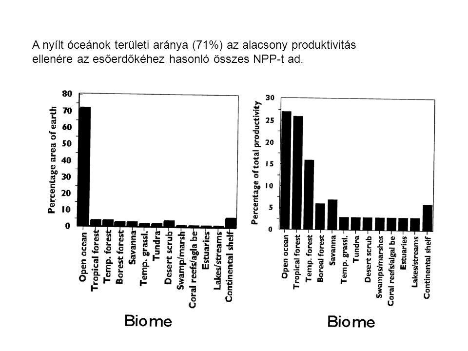 A nyílt óceánok területi aránya (71%) az alacsony produktivitás ellenére az esőerdőkéhez hasonló összes NPP-t ad.