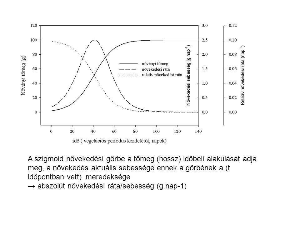 A szigmoid növekedési görbe a tömeg (hossz) időbeli alakulását adja meg, a növekedés aktuális sebessége ennek a görbének a (t időpontban vett) meredeksége