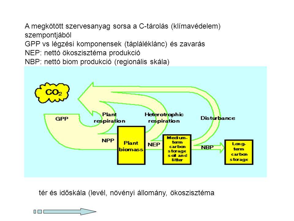 A megkötött szervesanyag sorsa a C-tárolás (klímavédelem) szempontjából
