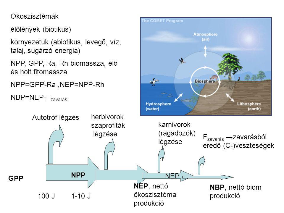 Ökoszisztémák élőlények (biotikus) környezetük (abiotikus, levegő, víz, talaj, sugárzó energia) NPP, GPP, Ra, Rh biomassza, élő és holt fitomassza.