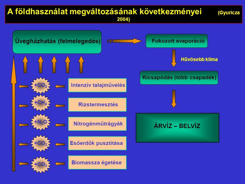 A földhasználat megváltozásának következményei (Gyuricza 2004)
