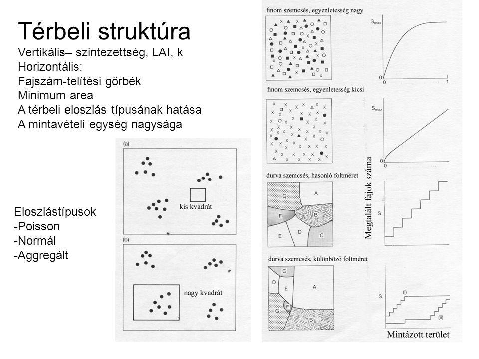 Térbeli struktúra Vertikális– szintezettség, LAI, k Horizontális: