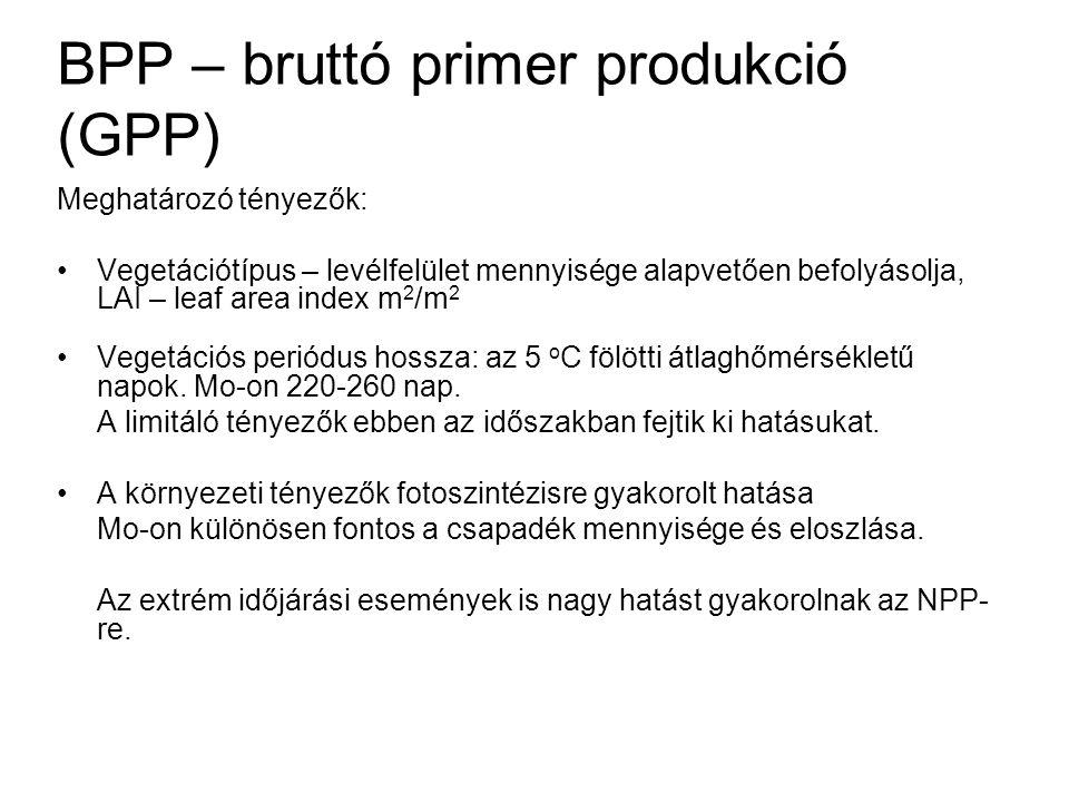 BPP – bruttó primer produkció (GPP)