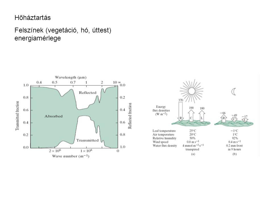 Hőháztartás Felszínek (vegetáció, hó, úttest) energiamérlege