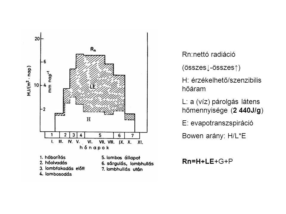 Rn:nettó radiáció (összes↓-összes↑) H: érzékelhető/szenzibilis hőáram. L: a (víz) párolgás látens hőmennyisége (2 440J/g)