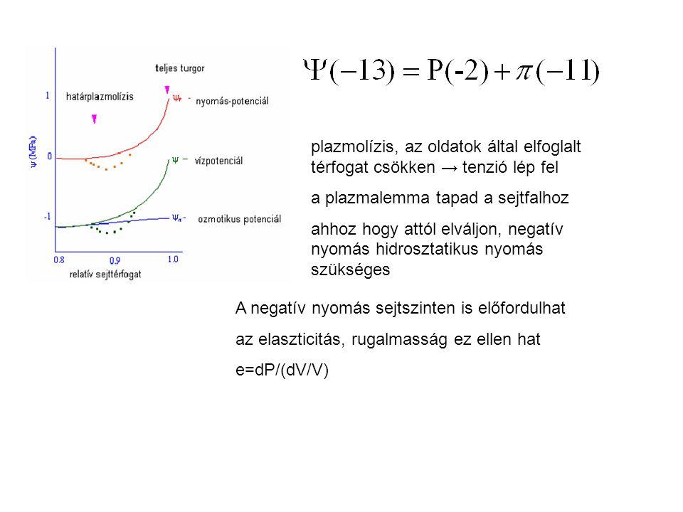 plazmolízis, az oldatok által elfoglalt térfogat csökken → tenzió lép fel