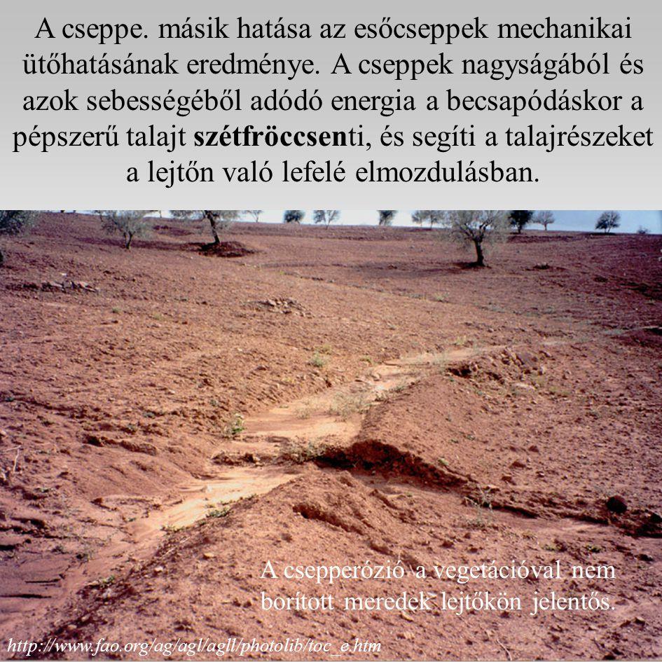 A csepperózió a vegetációval nem borított meredek lejtőkön jelentős.