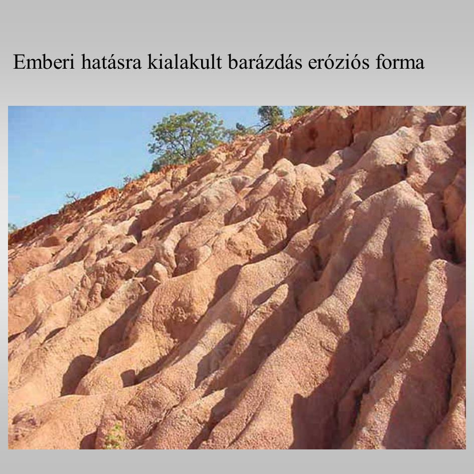 Emberi hatásra kialakult barázdás eróziós forma