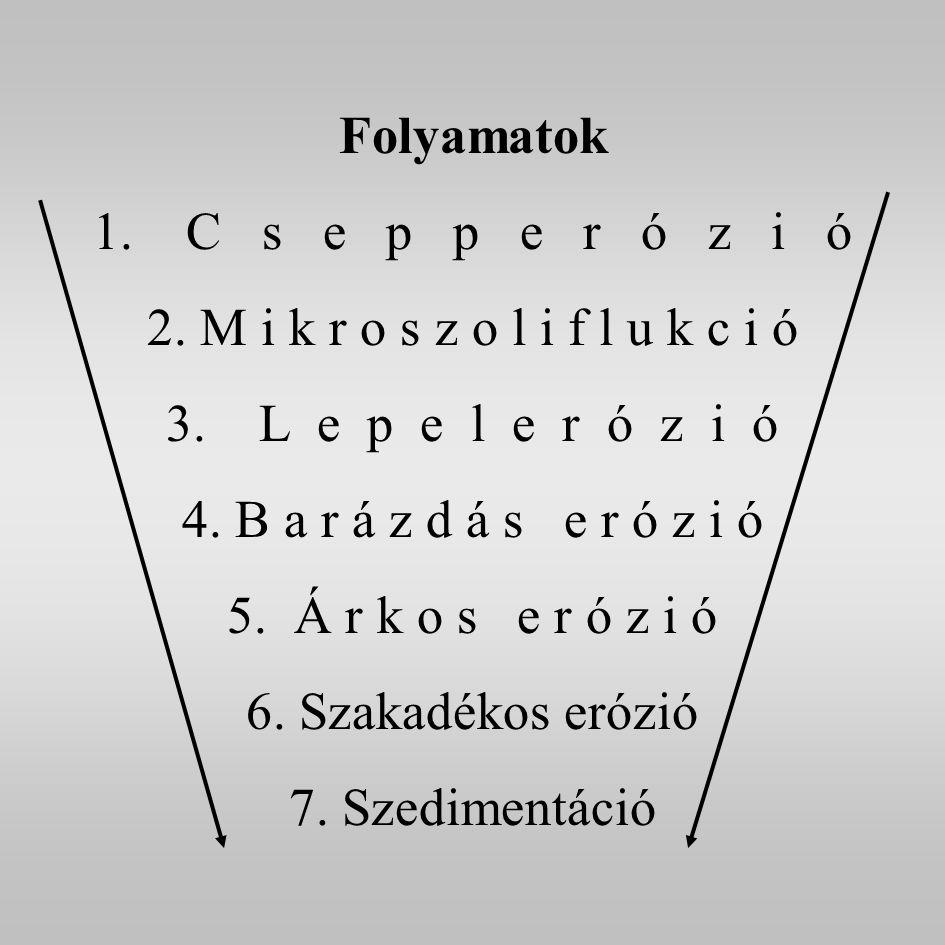 Folyamatok C s e p p e r ó z i ó. M i k r o s z o l i f l u k c i ó. L e p e l e r ó z i ó.