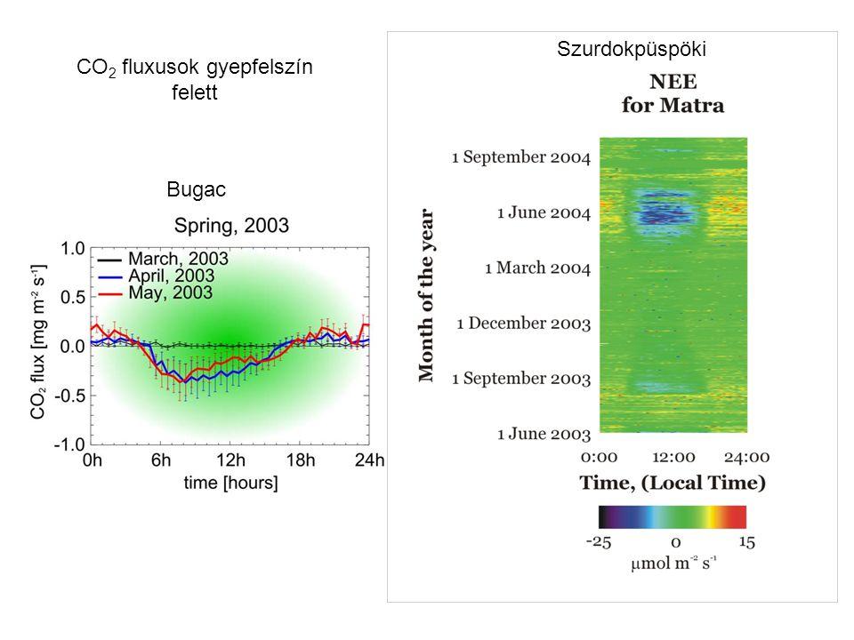 CO2 fluxusok gyepfelszín felett