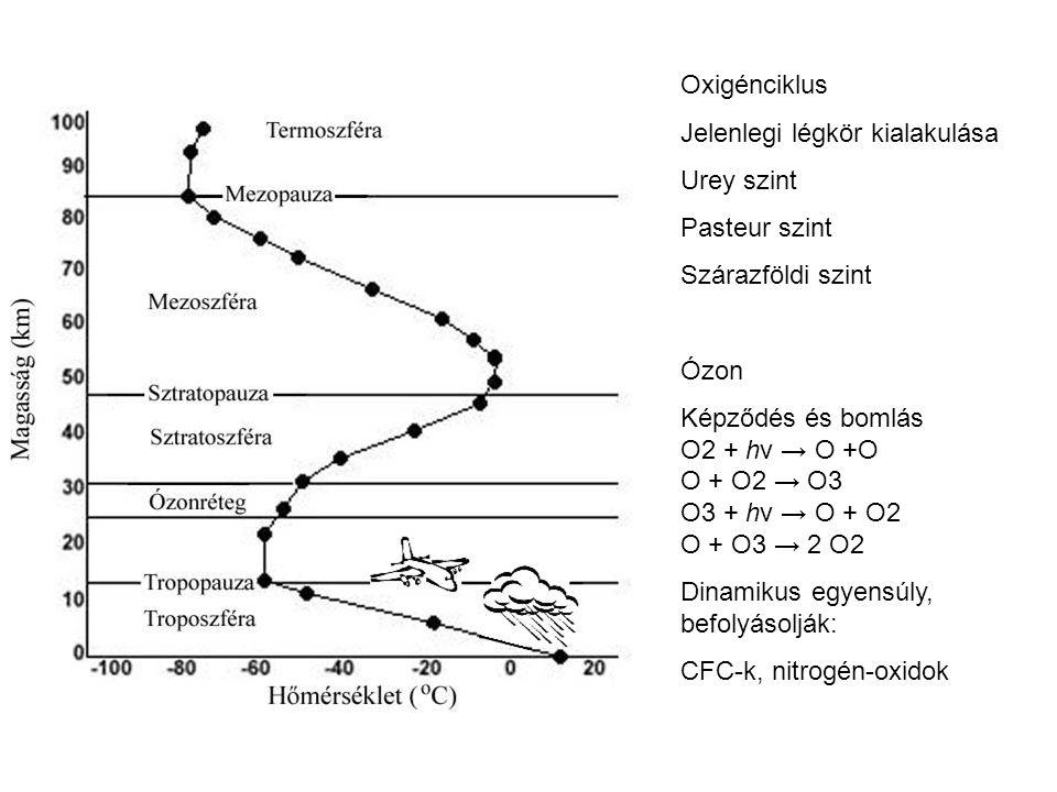 Oxigénciklus Jelenlegi légkör kialakulása. Urey szint. Pasteur szint. Szárazföldi szint. Ózon. Képződés és bomlás.