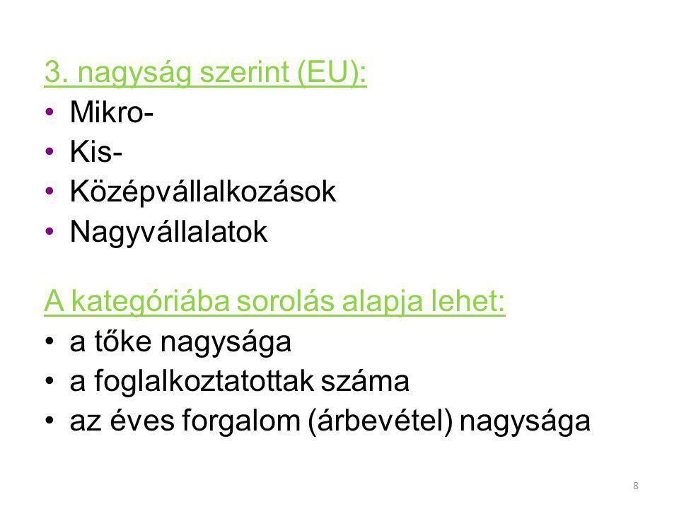 3. nagyság szerint (EU): Mikro- Kis- Középvállalkozások. Nagyvállalatok. A kategóriába sorolás alapja lehet: