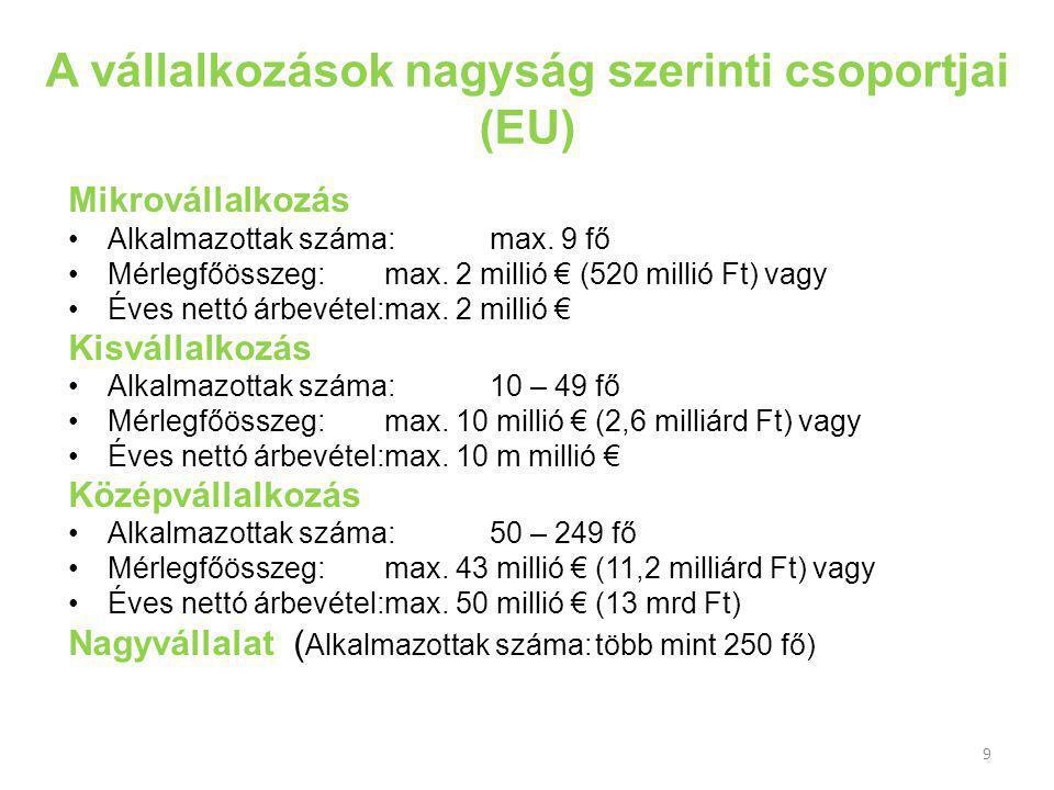 A vállalkozások nagyság szerinti csoportjai (EU)