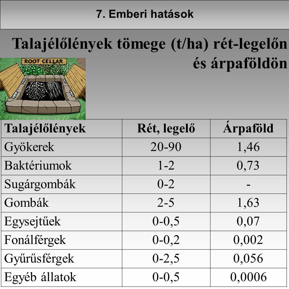 Talajélőlények tömege (t/ha) rét-legelőn és árpaföldön