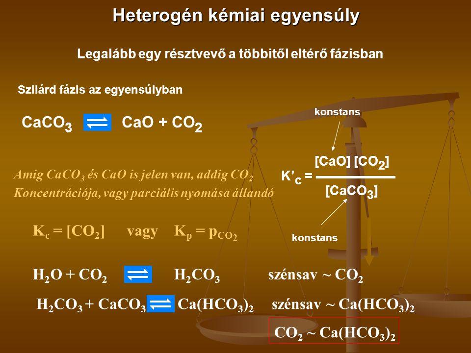 Heterogén kémiai egyensúly