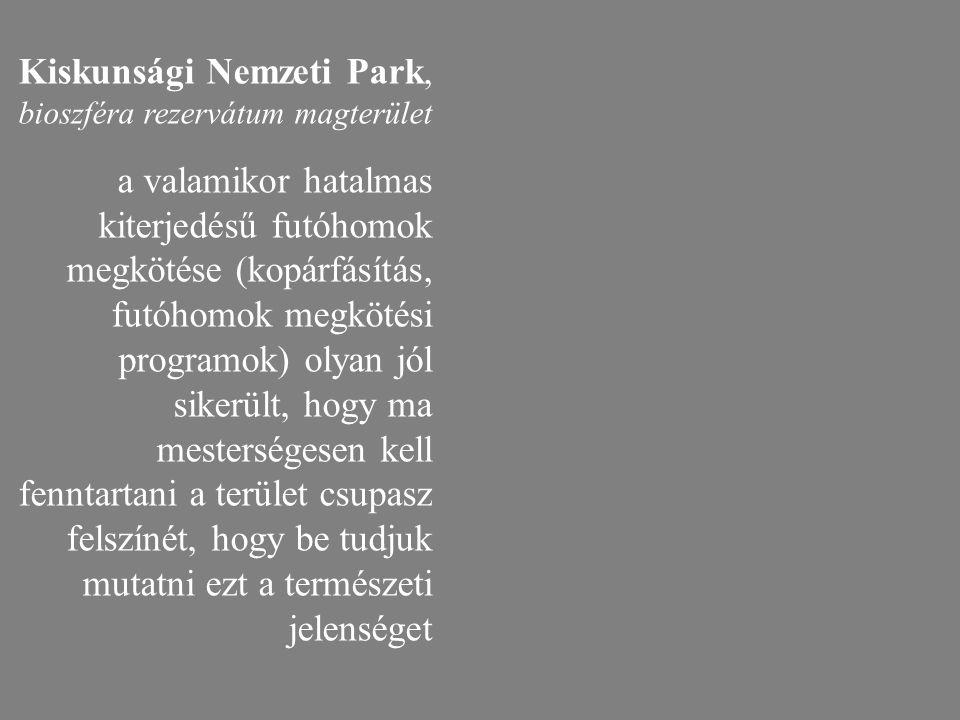 Kiskunsági Nemzeti Park, bioszféra rezervátum magterület