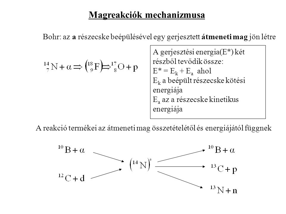 Magreakciók mechanizmusa