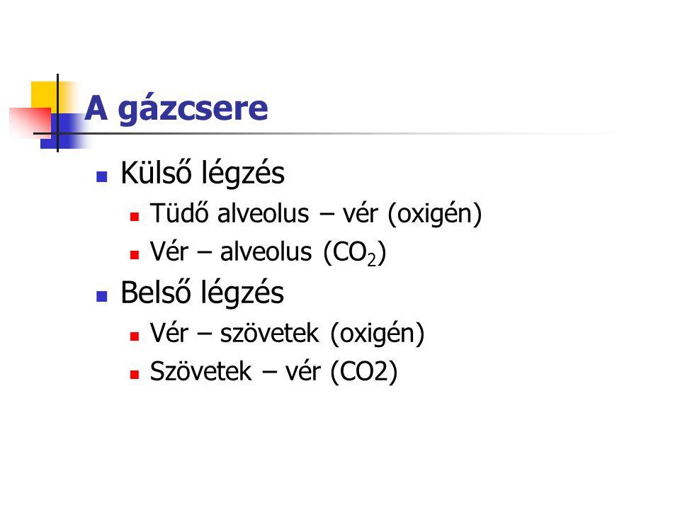 A gázcsere Külső légzés Belső légzés Tüdő alveolus – vér (oxigén)