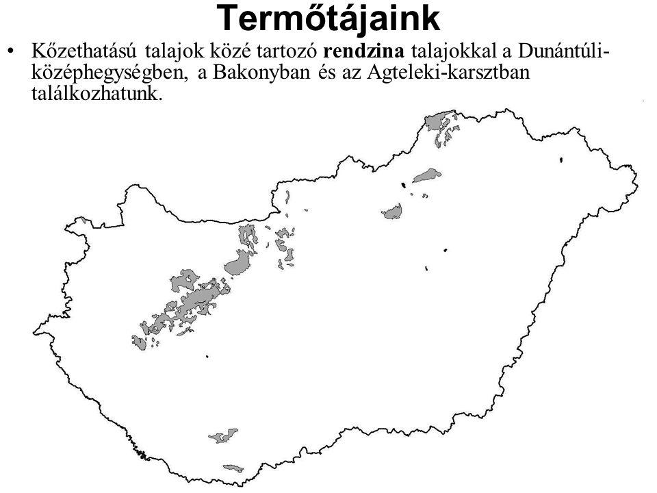 Termőtájaink Kőzethatású talajok közé tartozó rendzina talajokkal a Dunántúli-középhegységben, a Bakonyban és az Agteleki-karsztban találkozhatunk.