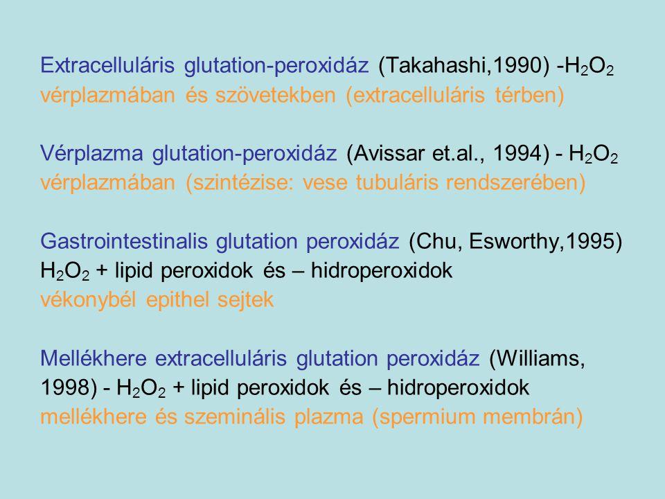 Extracelluláris glutation-peroxidáz (Takahashi,1990) -H2O2