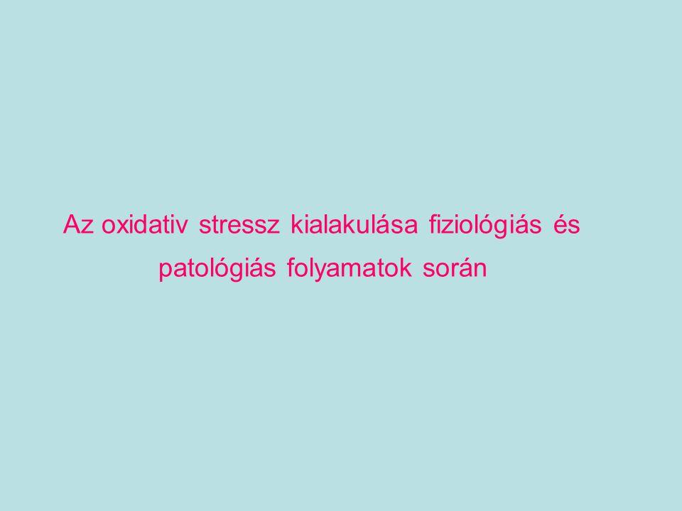 Az oxidativ stressz kialakulása fiziológiás és