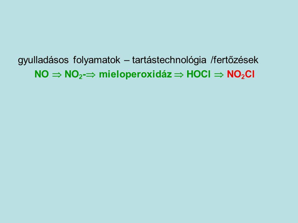 gyulladásos folyamatok – tartástechnológia /fertőzések