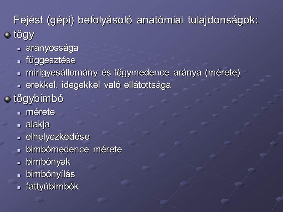 Fejést (gépi) befolyásoló anatómiai tulajdonságok: tőgy