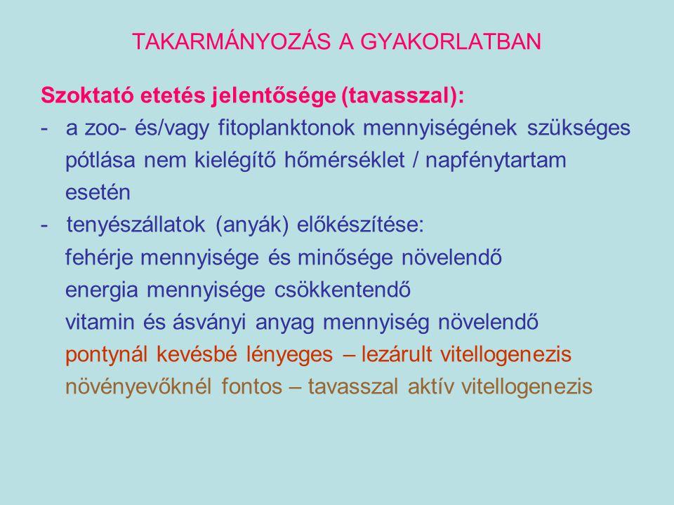 TAKARMÁNYOZÁS A GYAKORLATBAN