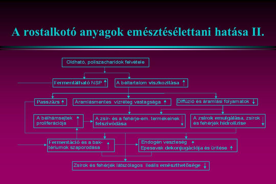 A rostalkotó anyagok emésztésélettani hatása II.