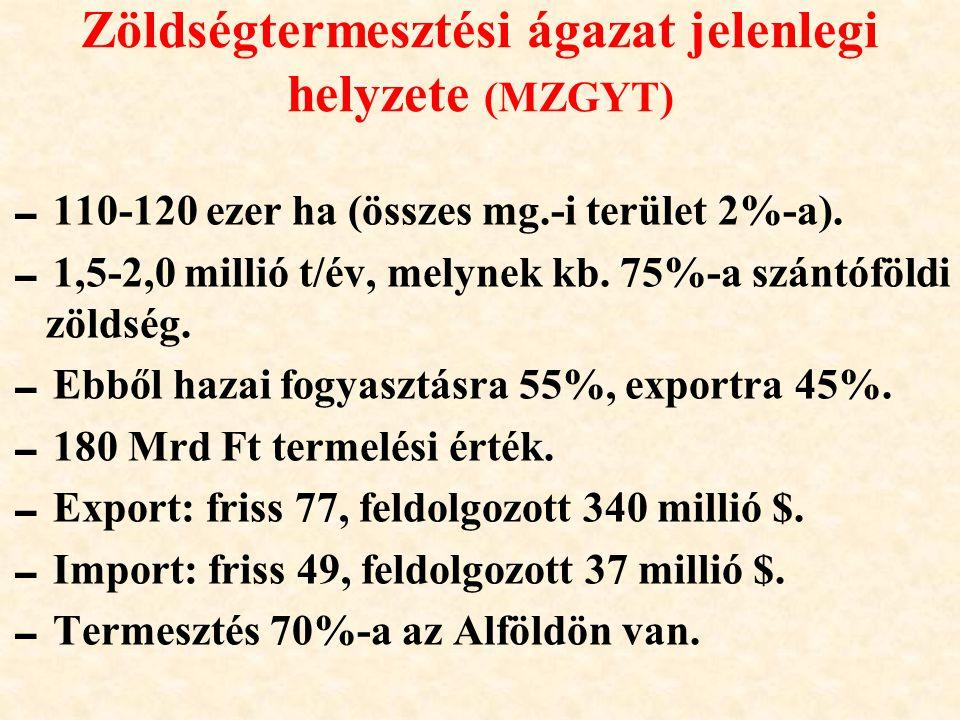 Zöldségtermesztési ágazat jelenlegi helyzete (MZGYT)