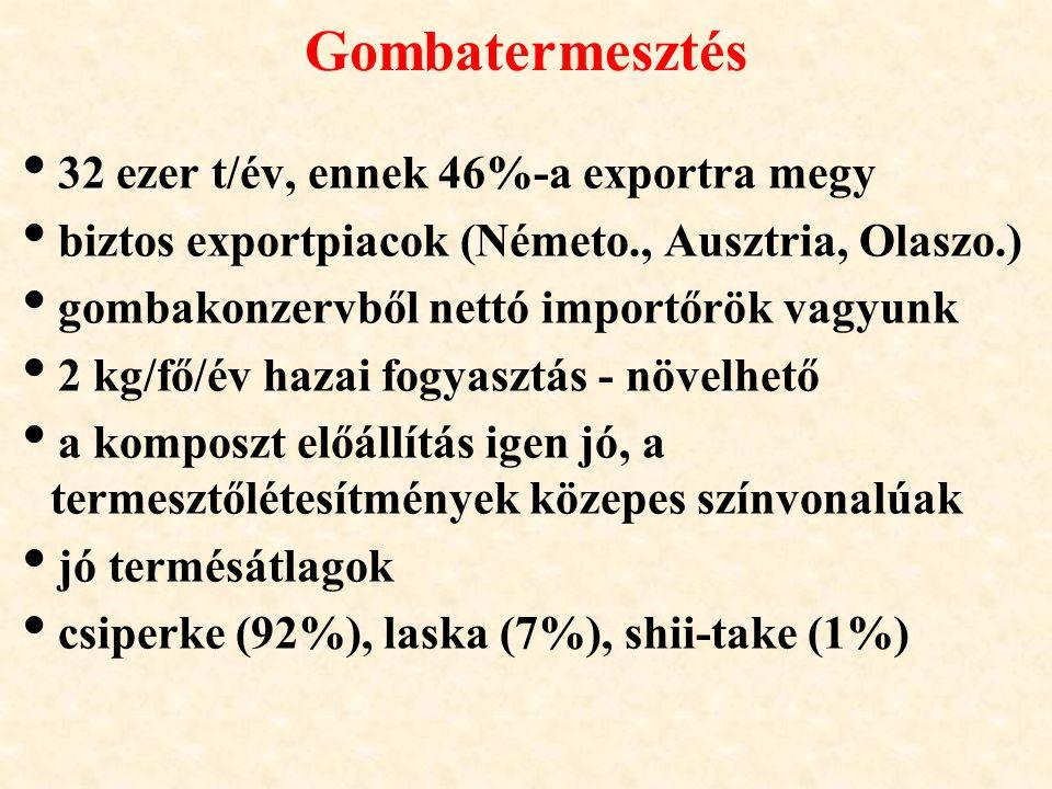 Gombatermesztés 32 ezer t/év, ennek 46%-a exportra megy
