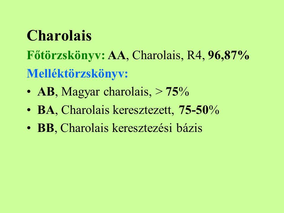 Charolais Főtörzskönyv: AA, Charolais, R4, 96,87% Melléktörzskönyv: