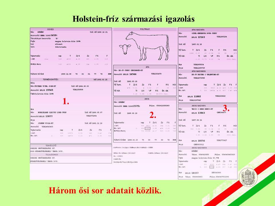 Holstein-fríz származási igazolás