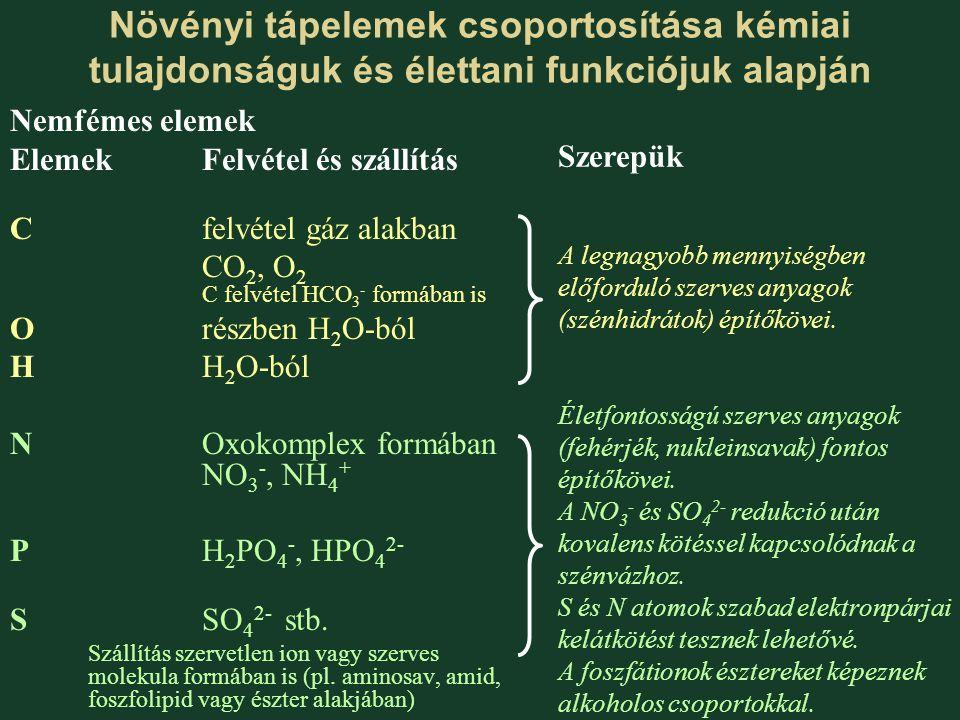 Növényi tápelemek csoportosítása kémiai tulajdonságuk és élettani funkciójuk alapján