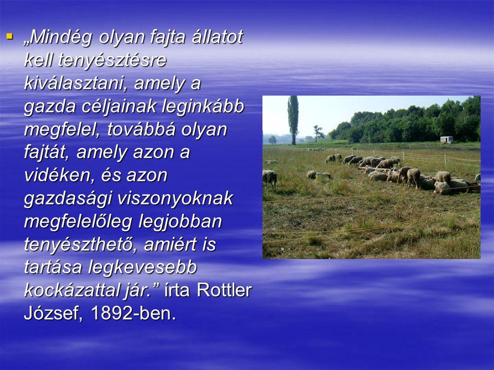 """""""Mindég olyan fajta állatot kell tenyésztésre kiválasztani, amely a gazda céljainak leginkább megfelel, továbbá olyan fajtát, amely azon a vidéken, és azon gazdasági viszonyoknak megfelelőleg legjobban tenyészthető, amiért is tartása legkevesebb kockázattal jár. írta Rottler József, 1892-ben."""