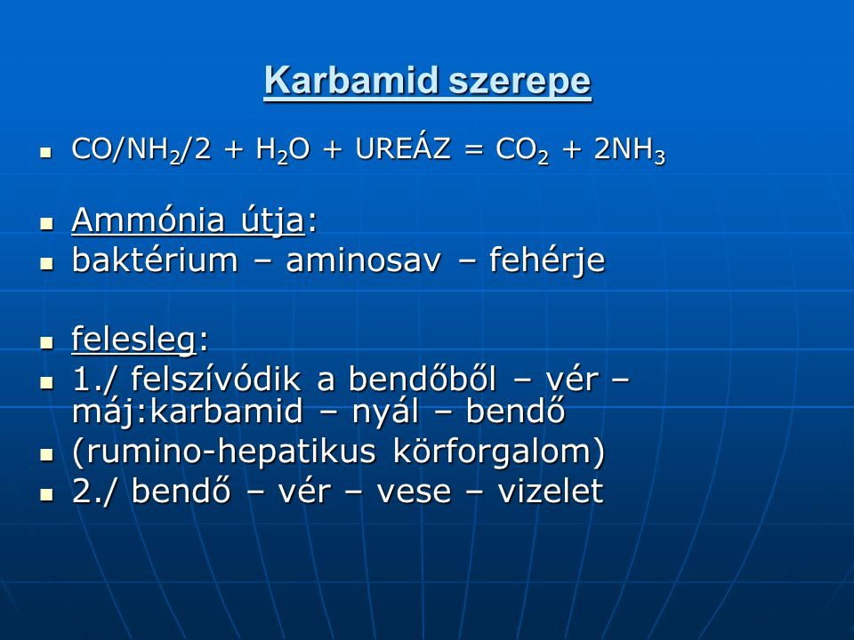 Karbamid szerepe Ammónia útja: baktérium – aminosav – fehérje