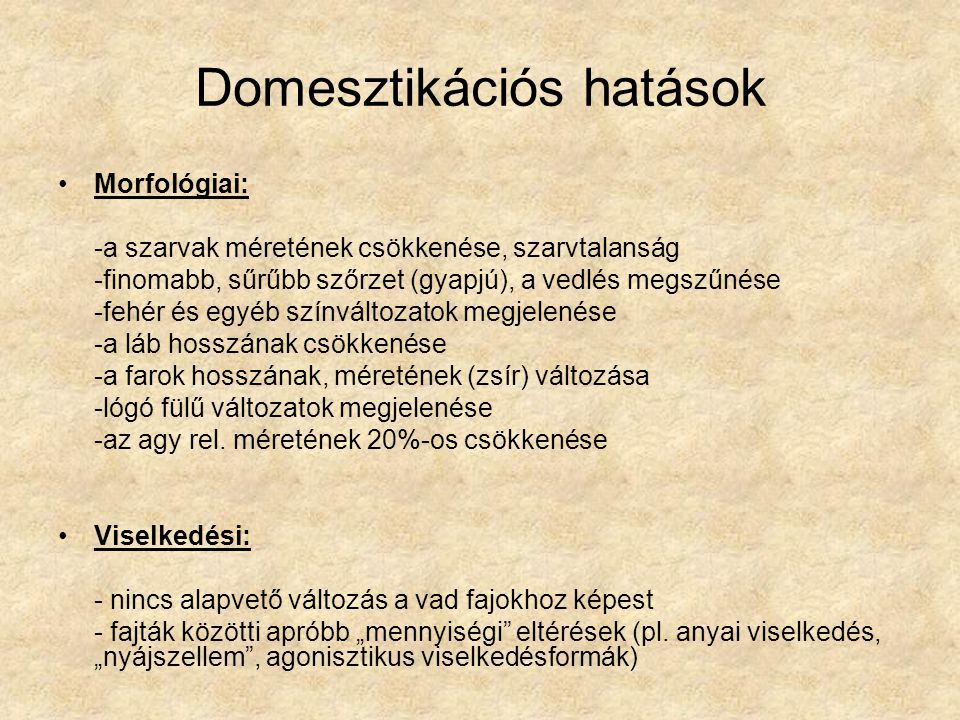 Domesztikációs hatások