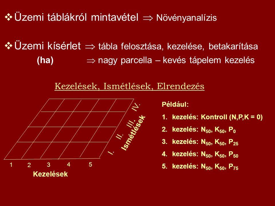Üzemi táblákról mintavétel  Növényanalízis