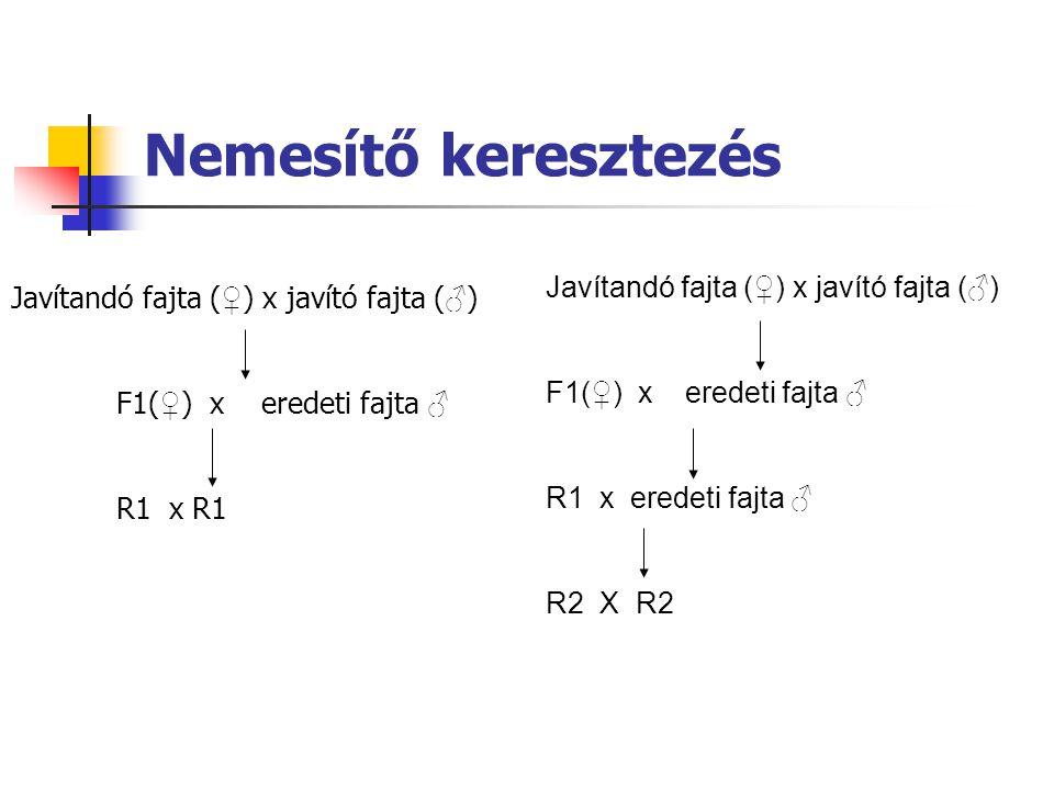Nemesítő keresztezés Javítandó fajta (♀) x javító fajta (♂)