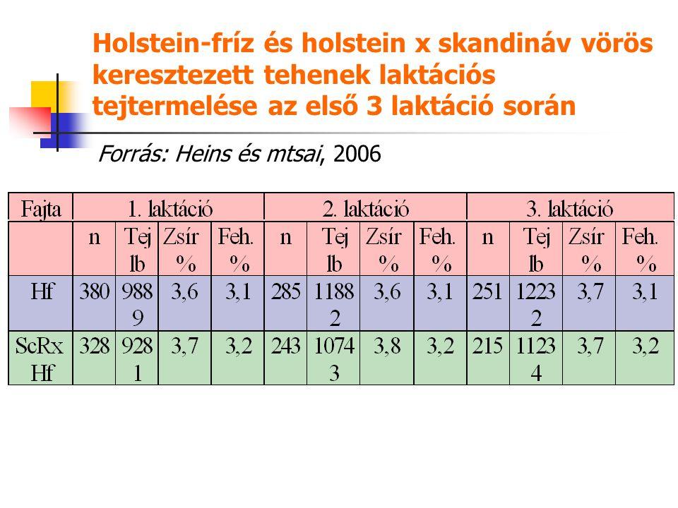 Holstein-fríz és holstein x skandináv vörös keresztezett tehenek laktációs tejtermelése az első 3 laktáció során