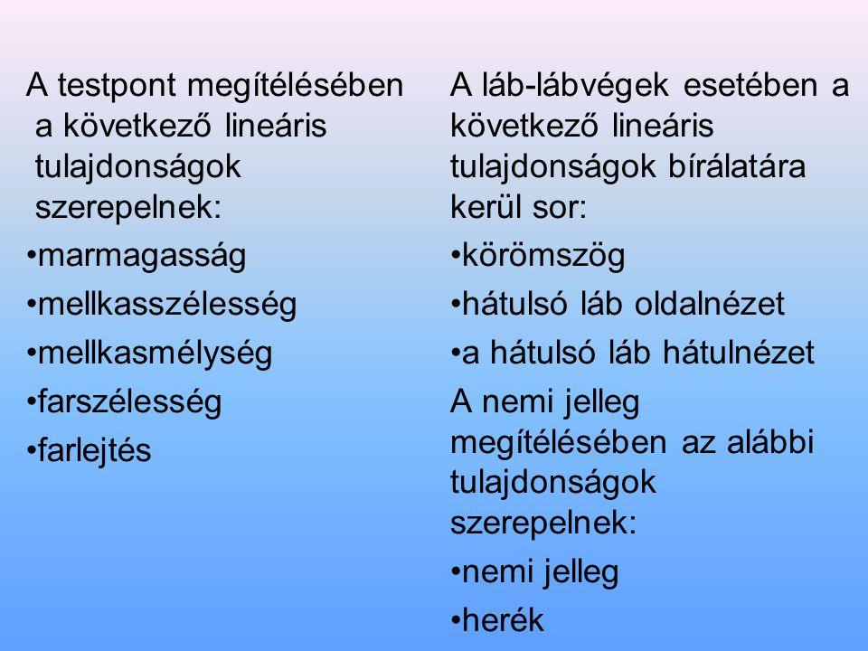 A testpont megítélésében a következő lineáris tulajdonságok szerepelnek: