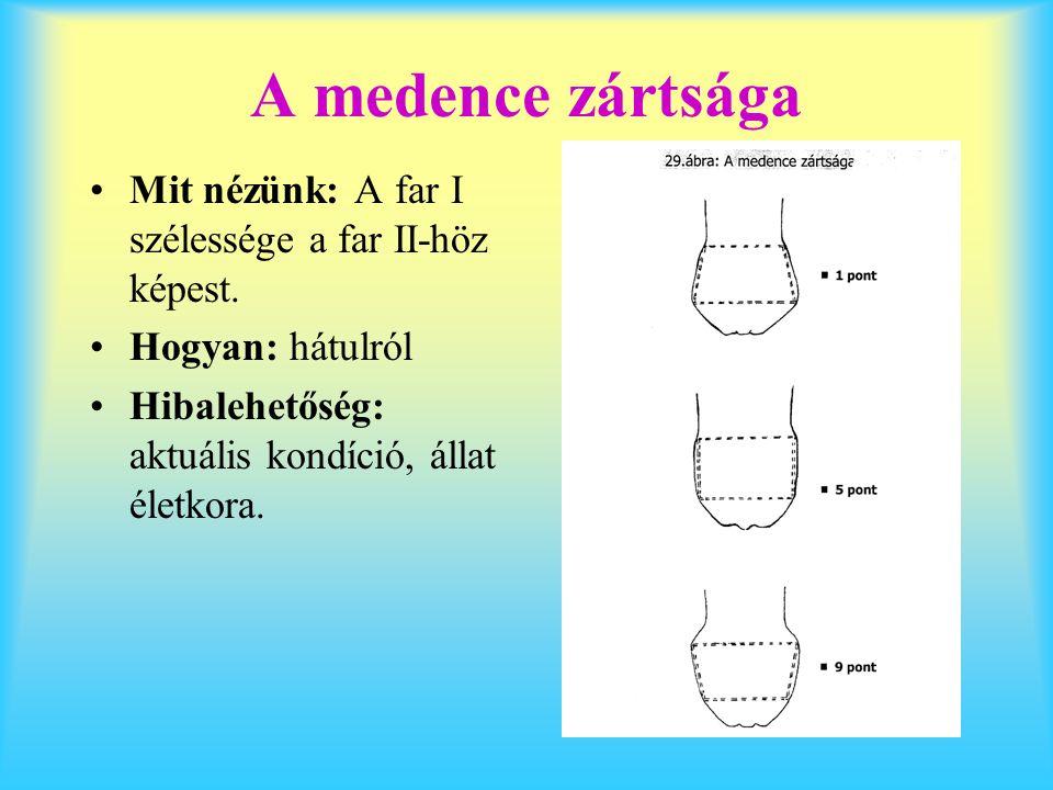 A medence zártsága Mit nézünk: A far I szélessége a far II-höz képest.