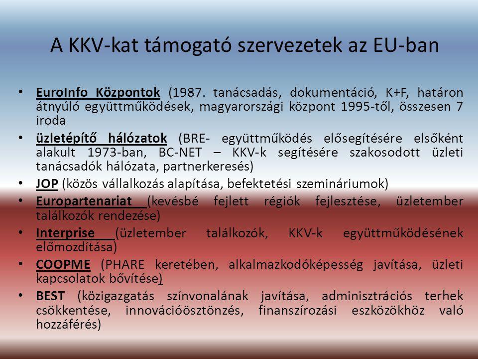A KKV-kat támogató szervezetek az EU-ban