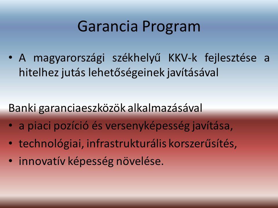 Garancia Program A magyarországi székhelyű KKV-k fejlesztése a hitelhez jutás lehetőségeinek javításával.