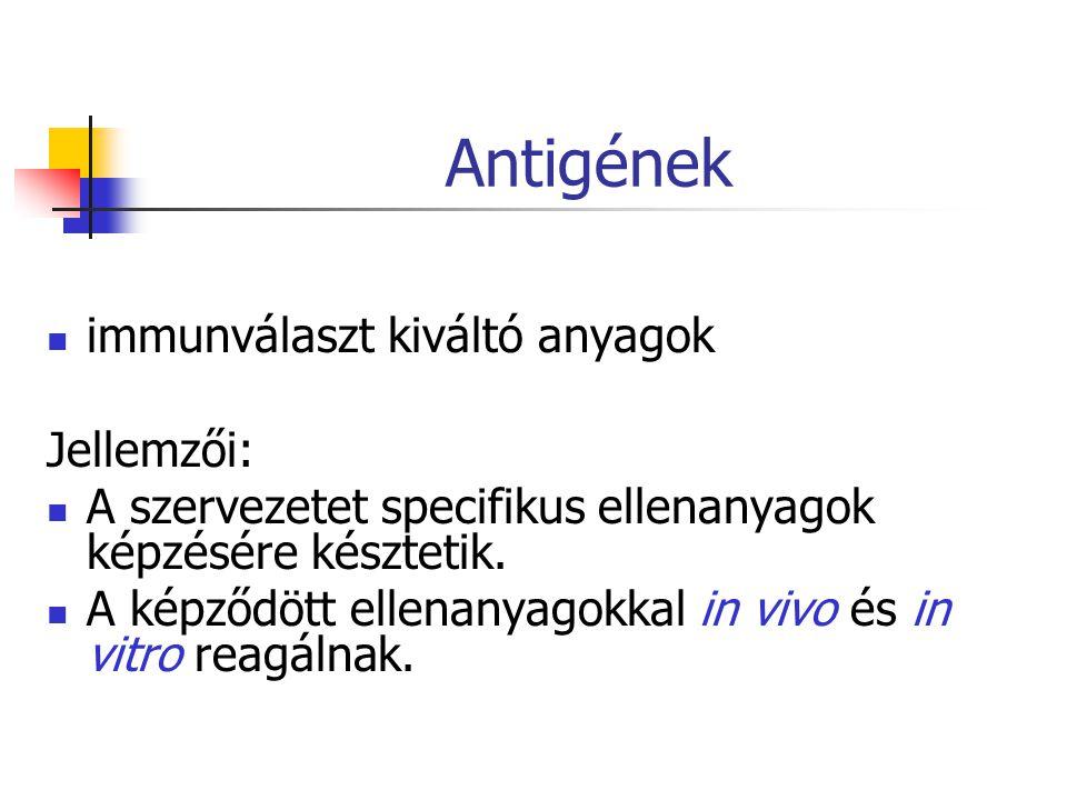 Antigének immunválaszt kiváltó anyagok Jellemzői:
